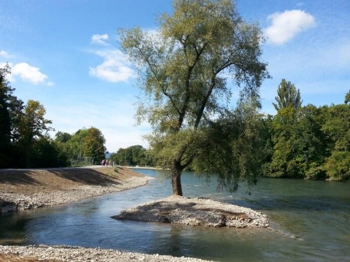Limmatauen Werdhölzli: Renaturierte Flusslandschaften erhöhen die Artenvielfalt und sind attraktiv fürs Auge. (©Grün Stadt Zürich)