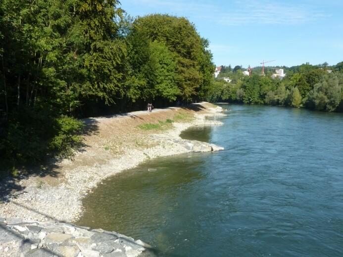 Limmatauen Werdhölzli: Steinbuhnen und Raubäume sichern das Ufer und dienen gleichzeitig als Fischunterstände. (©Grün Stadt Zürich)