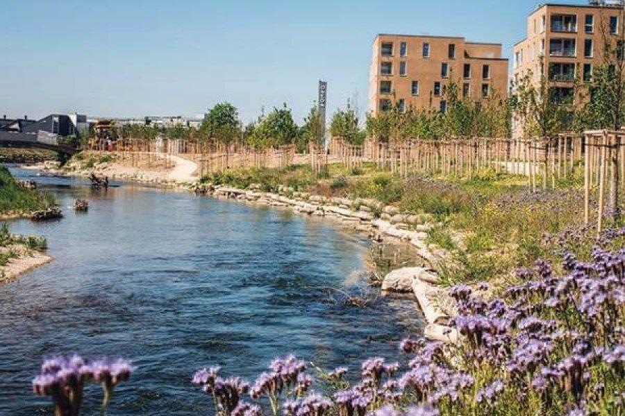Rheinaufweitungen: Erholung in der Nähe